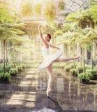 Ballet dancer posing in green botanical garden Stock Photography