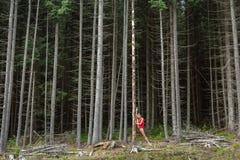 Ballet dancer posing outdoors royalty free stock image