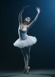 Ballet dancer and stage shows Stock Image