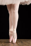 A ballet dancer standing on toes on rose petals with black backg. A ballet dancer standing on toes with rose petals on black background artistic conversion royalty free stock photo