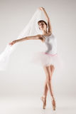 Ballet dancer in white tutu posing Royalty Free Stock Image