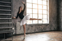 Ballet dancer. Young ballet dancer - Harmonious pretty woman posing in studio stock photos