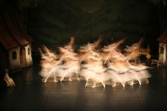 Ballet dancers. Female ballet dancers in movement Royalty Free Stock Image