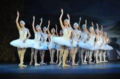 BALLET DANCERS, SWAN LAKE BALLET. Ballet dancers in the Swan Lake Ballet, Moscow Ballet stock photo