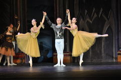 BALLET. Dancers in the Swan Lake  production, Moscow Stock Photography