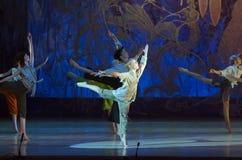Ballet de conte Photographie stock