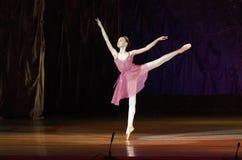 Ballet de conte Images stock