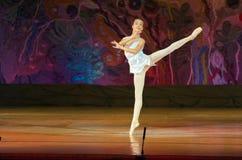 Ballet de conte Photos libres de droits