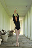Ballet in de gang Stock Afbeelding
