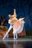 Ballet de lac swan image stock