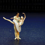 Ballet de lac swan Photos stock