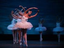 Ballet de lac swan exécuté par le ballet royal russe Image libre de droits