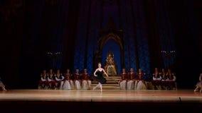 Ballet del lago swan almacen de video