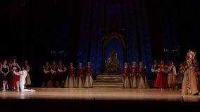 Ballet del lago swan almacen de metraje de vídeo