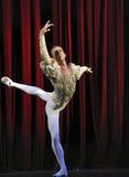 Ballet del lago swan Imagen de archivo libre de regalías