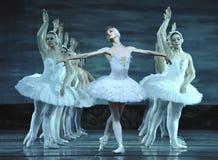 Ballet del lago swan Foto de archivo