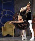 Ballet del lago swan Imagenes de archivo