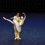 Ballet del lago swan Fotos de archivo