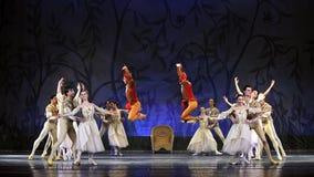 Ballet del lago swan realizado por el ballet real ruso Foto de archivo libre de regalías