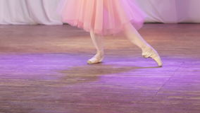 Ballet enige voeten stock video