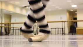 Ballet exercise, warm up for show stock video footage