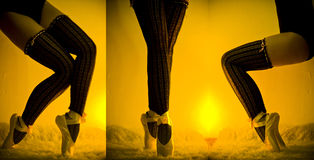 Ballet legs. In pointe shoes Royalty Free Stock Photos