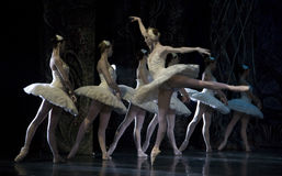 Ballet. MADRID, SPAIN - JANUARY 25, 2011: Russian imperial ballet's performance Swan Lake ballet at Teatro Compac Gran Via, January 25, 2011 in Madrid, Spain Royalty Free Stock Image