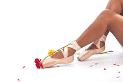 Ballet pointes. With flowers isolated on white background Royalty Free Stock Photography