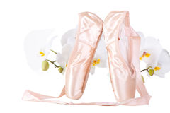 Ballet pointes with orchids on isolated white Stock Photo