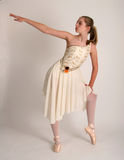 Ballet practice Royalty Free Stock Photos