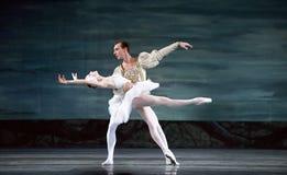 Ballet real ruso del cisne del perfome del ballet Fotografía de archivo