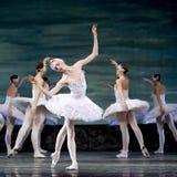 Ballet real ruso del cisne del perfome del ballet Foto de archivo