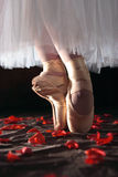 Ballet and Roses. A stock image of a ballerina standing on a bed of red rose petals. Emotive lighting stock photography