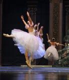 Ballet skirt Stock Images