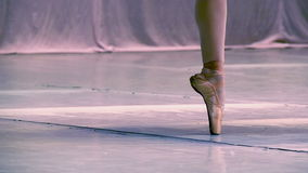 Ballet stock footage