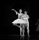 Ballet Swan Lake. By Russian State Ballet performed in Jiangxi Art Center Stock Image