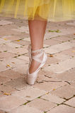Ballet toe shoes. Art woman royalty free stock photo