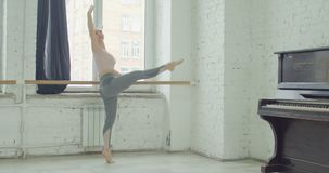 Balletdansers die terboushon bij staaf praktizeren stock video