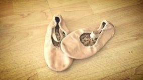 Balletpantoffels Royalty-vrije Stock Foto
