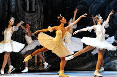 Ballett auf Eis Lizenzfreie Stockbilder