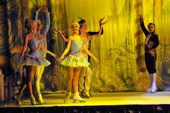 Ballett auf Eis Stockbild