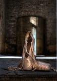 Ballett in Chartreuse Stockfoto