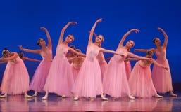 Balletto Immagine Stock