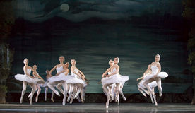 Balletto del lago swan Fotografia Stock Libera da Diritti