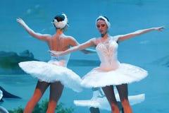 Balletto del lago swan su ghiaccio immagine stock