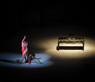 Balletto Femminismo-moderno: Trollius chinensis Immagini Stock Libere da Diritti