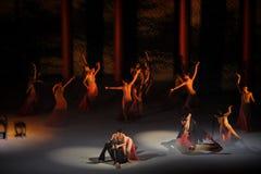 Balletto Intrico-moderno: Trollius chinensis Fotografia Stock