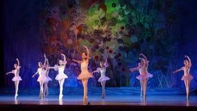 Ballettperlenshow stock footage