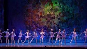 Ballettperlenshow stock video