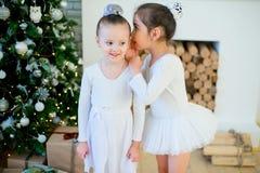 Balletttänzer mit zwei Jungen, der nahen Weihnachtsbaum steht Stockbild
